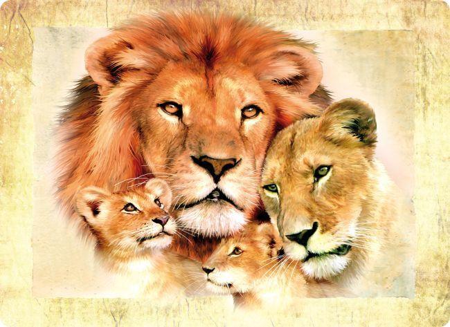 Lion Family - Glass Worktop Lion Family